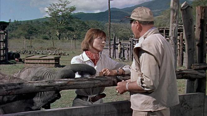 Hatari! (Howard Hawks, 1962)